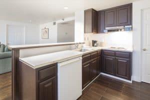 Kicthen area with Dishwasher