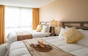Executive Suite Doulb Bed